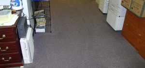 After ProClean Carpet Cleaning Services