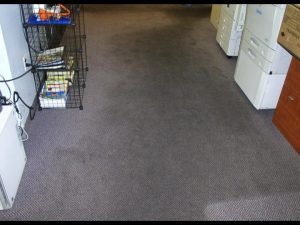 Dirty Carpet Before ProClean Hawaii Carpet Cleaning Sevices.